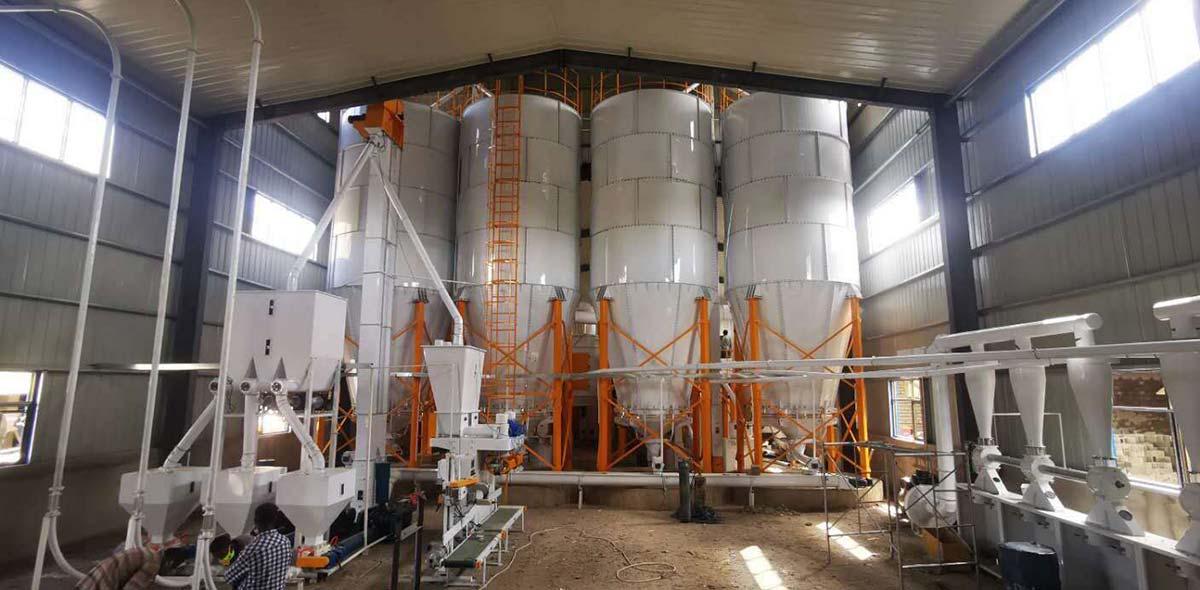 Ethiopia 220TPD Équipements complets de blé Turnkey Project